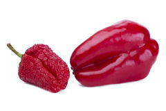 Sbiadicendosi e peperone dolce rosso fresco nel confronto Fotografie Stock Libere da Diritti