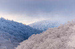 Sbiadire la luce della montagna Fotografie Stock