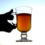 Sbiten, boisson russe avec du miel Photographie stock libre de droits