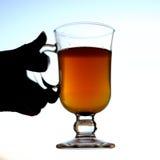 Sbiten, Rosyjski napój z miodem Fotografia Royalty Free