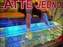 Sbocco di terapia del pesce Fotografia Stock
