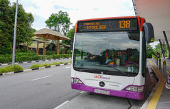 SBS-busreis in Singapore Stock Afbeelding