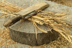 Sbucciatura del grano Fotografia Stock