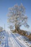 Scène écossaise de neige Photos libres de droits