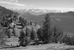 Scène alpine avec les montagnes couvertes par neige Photo stock