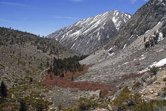 Scène alpine avec les montagnes couvertes par neige Photographie stock