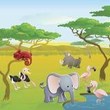 Scène animale de dessin animé de safari africain mignon Photos libres de droits