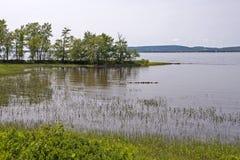 Scène au bord du lac d'été images libres de droits