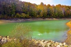 Scène automnale avec le jaune, l'étang et les arbres d'automne Photos stock