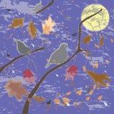 Scène automnale avec les oiseaux, le ciel, la lame et la lune Photographie stock libre de droits