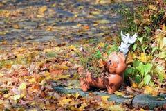 Scène avec du charme de jardin d'automne Photo libre de droits