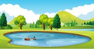 Scène avec l'étang dans le domaine illustration stock
