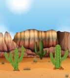 Scène avec le canyon et le cactus dans le désert illustration de vecteur