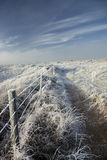 Scène côtière de neige Images stock
