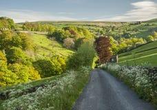 Scène d'été de vallées de Yorkshire Photos stock