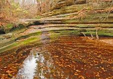 Scène d'étang d'automne en Illinois Images libres de droits