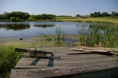 Scène d'étang de l'Iowa photographie stock libre de droits