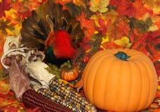Scène d'automne Photographie stock libre de droits