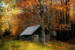 Scène d'automne Photographie stock