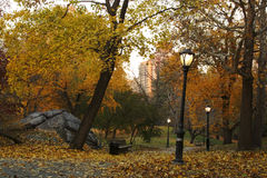 scène d'automne Photo stock