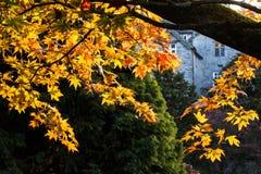 Scène d'automne, château Cumbria de Sizergh Photographie stock libre de droits