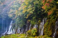 Scène d'automne de cascade de Shiraito photos stock