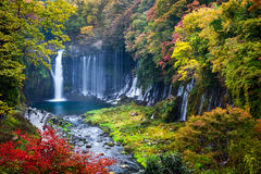 Scène d'automne de cascade de Shiraito photo stock