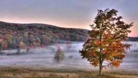 Scène d'automne de vallée de Canaan Photographie stock