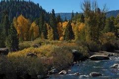 Scène d'automne sur le fleuve de Truckee photo libre de droits