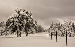 Scène d'hiver, Bulgarie Photos stock