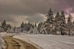 Scène d'hiver, Bulgarie Photographie stock