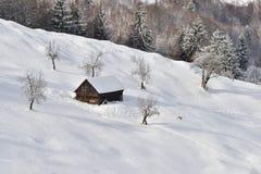 Scène d'hiver en Roumanie, beau paysage des montagnes carpathiennes sauvages Image stock