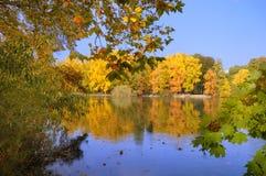 Scène de bord de lac d'automne Images libres de droits