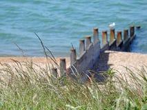Scène de brise-lames de bord de la mer Photo stock