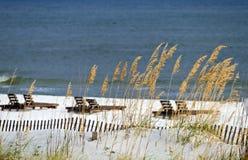 Scène de côte de Golfe Images libres de droits