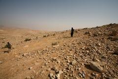 Scène de désert photos stock