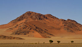 Scène de désert photo stock