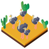 Scène de désert avec des autruches dans la conception 3D Images stock