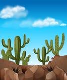 Scène de désert avec des usines de cactus illustration de vecteur