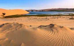 Scène de désert avec les dunes de sable, le lac, les usines et les modèles de sable image libre de droits