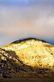 Scène de désert dans l'automne Photographie stock libre de droits
