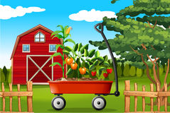 Scène de ferme avec des légumes sur le chariot Images libres de droits