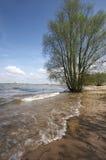 Scène de fleuve Photographie stock