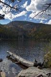 Scène de Fleuve Colorado Photographie stock