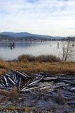 Scène de fleuve de l'hiver Photo libre de droits