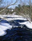 Scène de fleuve de l'hiver Images libres de droits
