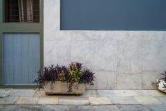 Scène de fond de l'espace de copie de façade de bâtiment de rue de vintage dans la couleur grise bleue et chaude en pastel de pei Image stock