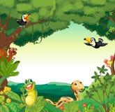 Scène de forêt Image stock