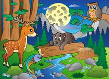 Scène de forêt avec les divers animaux 2 Photographie stock