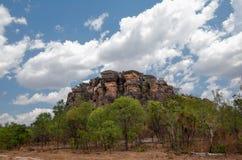 Scène de Kakadu Photos libres de droits